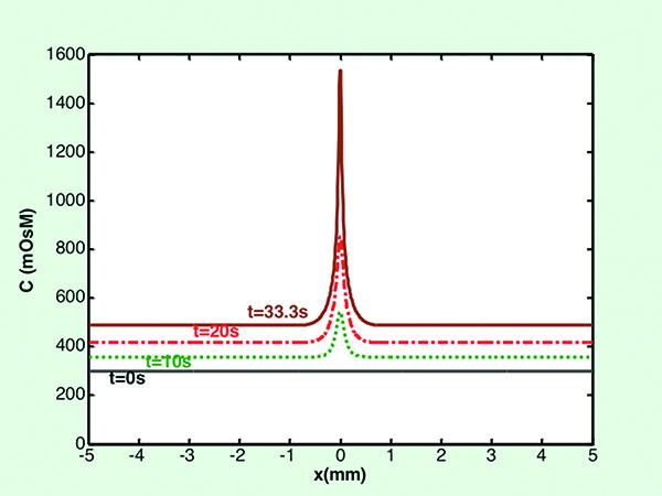 ingredienti dell inibitore di carboidrati grasso nucleo tls
